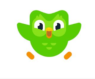 Duolingo Review | Login | Language|App And Profile – What is Duolingo Memes, Birds, Duolingo owl