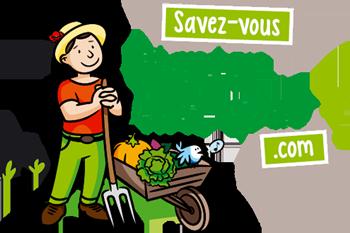 Preter un jardin | créer potager | partager son jardin - Savez-vous planter chez nous