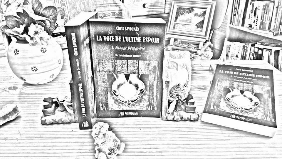 BOULEVARD DE MA LITTERATURE : LES SAISONS EN FETE : L'HIVER - A Vos Rêves