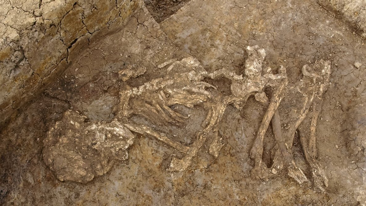 Cette découverte archéologique bouscule les certitudes concernant les rites funéraires de l'époque.