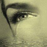 الحب - Blog de nadir2785