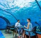 दुनिया के अजब गजब और अनोखे रेस्टोरेंट | Top 5 Strange Restaurants In Hindi