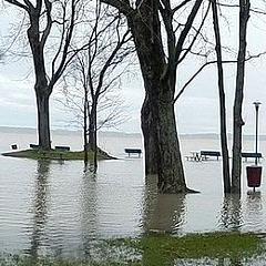 Inondations : «Réintégrer son domicile», un document gouvernemental sur les mesures de sécurité (en ligne)