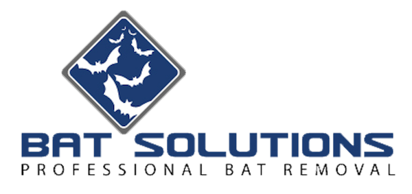 Bat Solutions llc