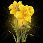 Posté le samedi 12 mai 2012 00:03