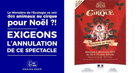 Pétition : Le Ministère de l'Écologie va voir des animaux au cirque pour Noël #SouffranceAnimaleAuMinistere