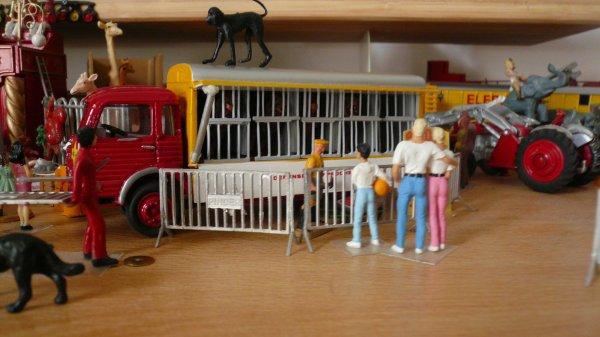Visite des fauves et de leurs cages ...