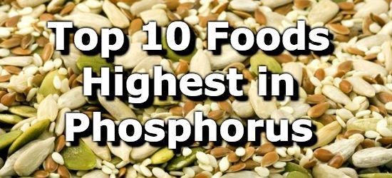Top 10 Foods Highest in Phosphorus
