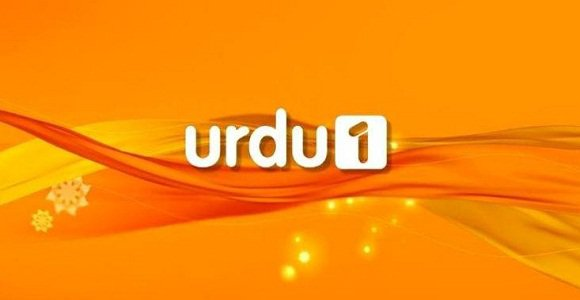 Watch Urdu 1 Online Streaming Free | Urdu 1 Live Online Free Streaming | Urdu 1 Online Live Free Pakistan | Live TV Streaming Free