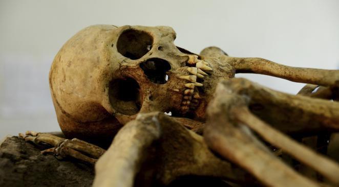 Le premier meurtre, ce n'était donc pas Abel et Caïn?