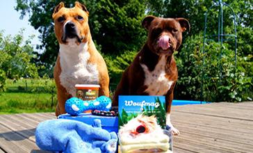 les bons coins les box cadeau pour chien conseils d 39 un chien son maitre. Black Bedroom Furniture Sets. Home Design Ideas