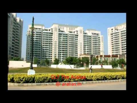 DLF The Aralias in Sector 42 Gurgaon , DLF Gurgaon project, Property in Sector 42 Gurgaon with subtitles | Amara