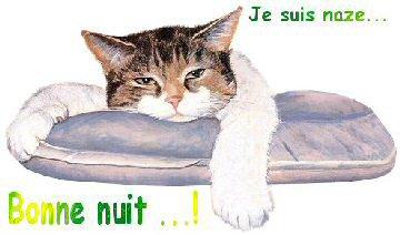 gifs bonsoir bonne nuit - Page 2