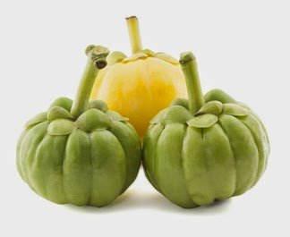 Zero Risk Simple Way To Have Garcinia Cambogia Select ~ Fat Burning