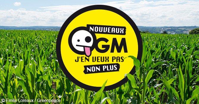 Des nouveaux OGM bientôt dans nos champs et nos assiettes ?