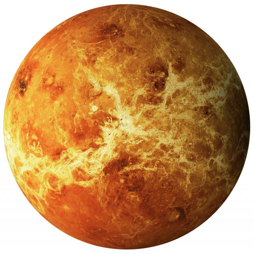 Venus – Cognitio