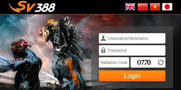 Situs Judi Sabung Ayam Online SV388