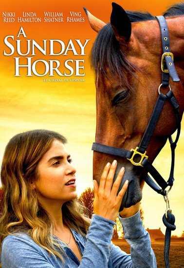 A SUNDAY HORSE, le cheval de l'espoir 2015