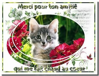 Bonjour ..je vous souhaite à tous une très bonne fin de semaine ! !