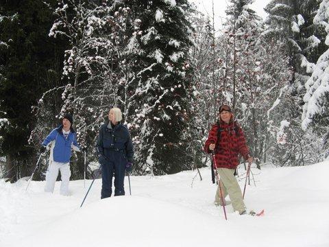 Snowshoeing Morzine