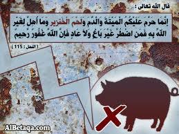 إسلاميات: تحريم لحم الخنزير ... لماذا؟!