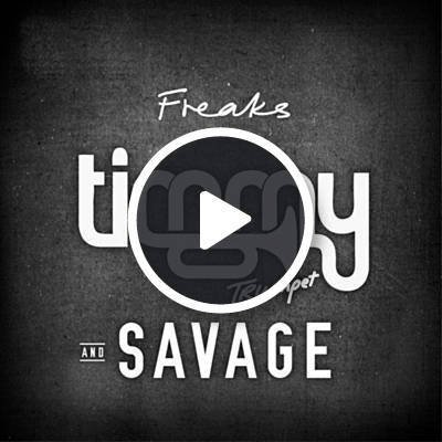 Freaks by Timmy Trumpet & Savage