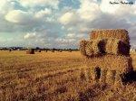 Haythem Photography | Facebook