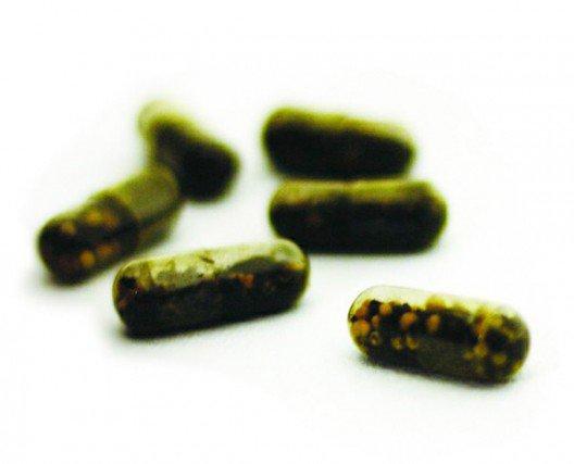Pilules de graines pour Guerilla gardening