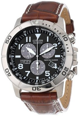 Citizen Mens Watch BL5250 02L | The Best Items