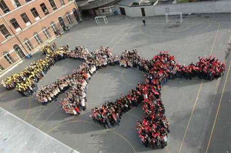 Une nouvelle association partenaire : Les Îles de paix ! - ONG Conseil Belgique