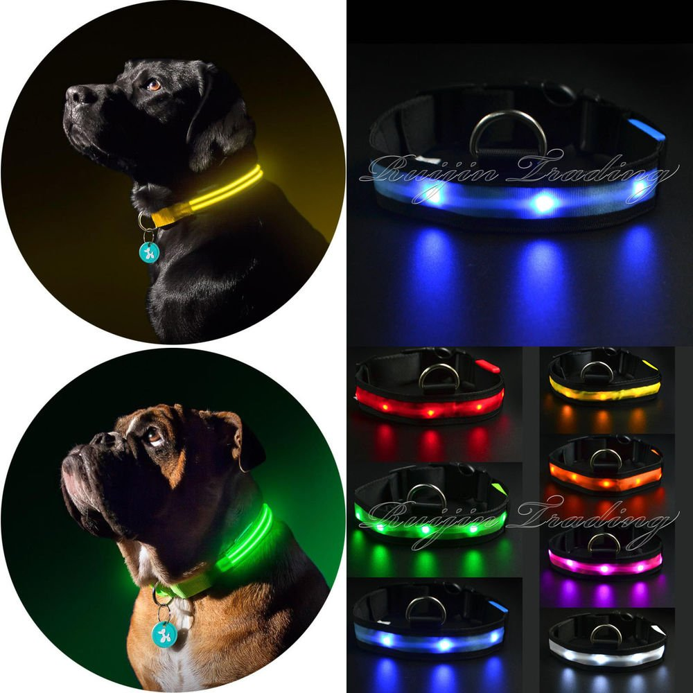 Flashing Glow Light LED Pet Dog Collar Adjustable Luminous Puppy Safety Collar | eBay