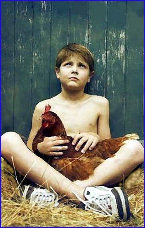 gamin torse nu au poulet