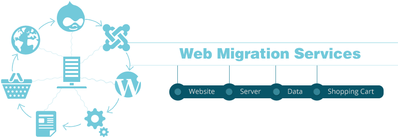 Why choose an experienced Website Migration Expert?