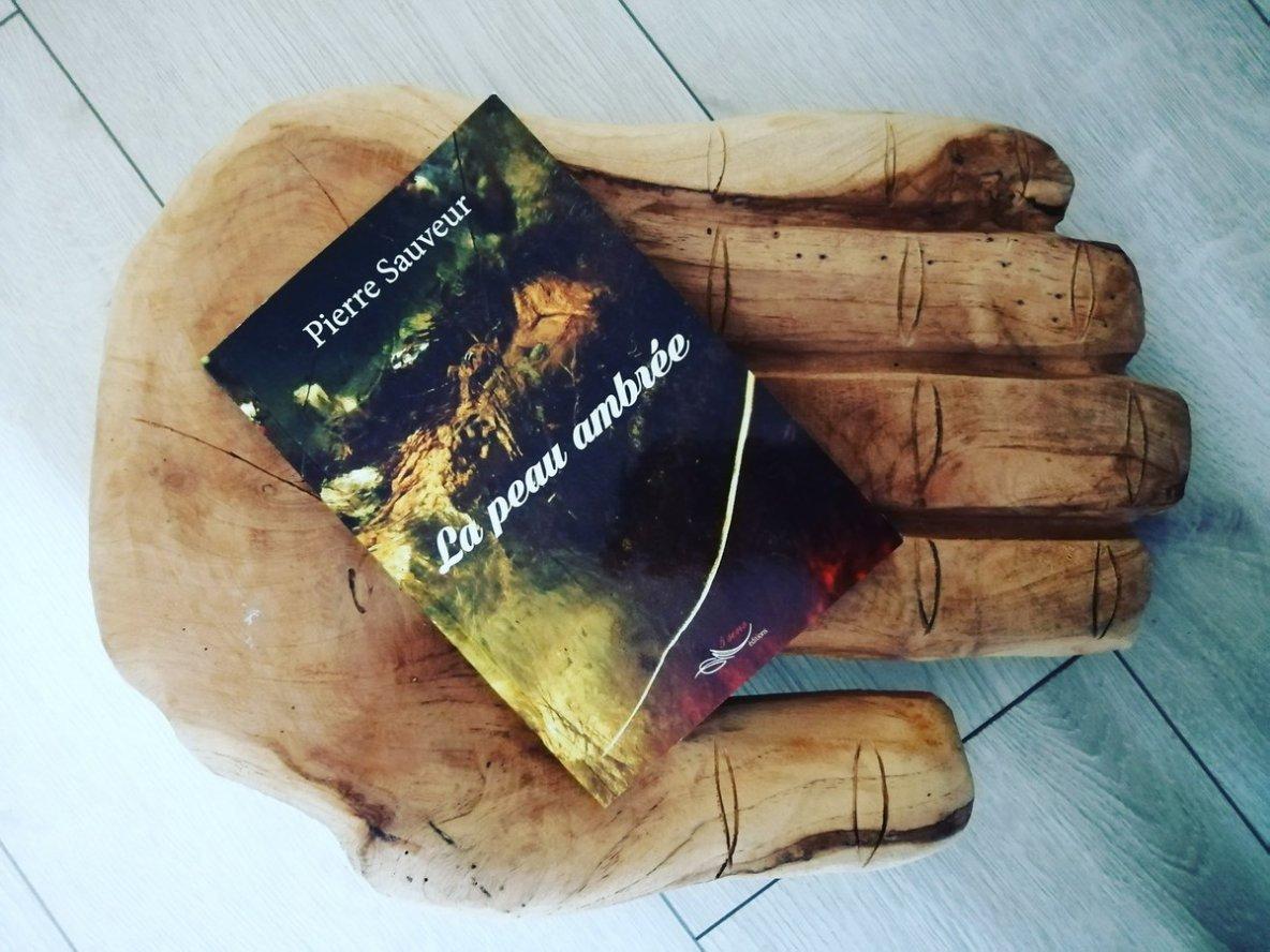 2ème Critique littéraire LA PEAU AMBREE de Pierre SAUVEUR - Livrement-Ka