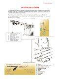 Fichier PDF peche carpe.pdf