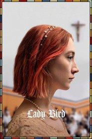 Watch Full Lady Bird (2017) Online Full Movie at hd.megafoxmovies.com