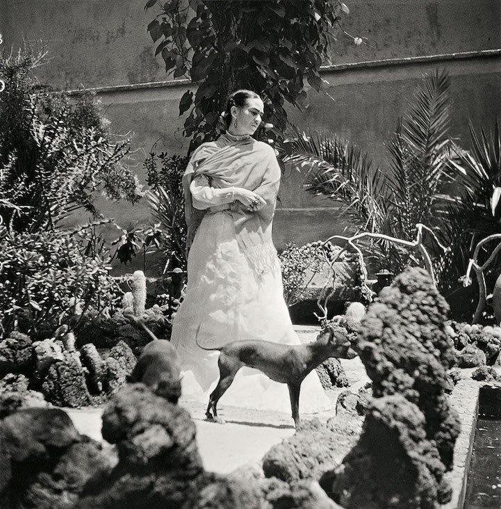 http://www.niceplacevisit.com/extremely-wonderful-images-frida-kahlo/