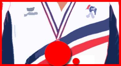 Les Champions de France triplette 2016 à Montauban - PALMARÈS Championnats - ARTICLES sur la pétanque