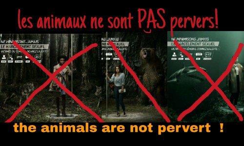 Les animaux ne sont pas des pervers !