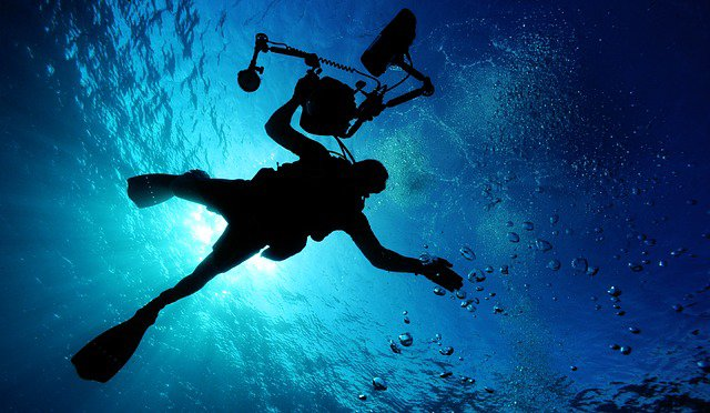 World's best locations for cold water diving - Latest Flights and Travel News