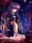 Blog de Miyuki-sama