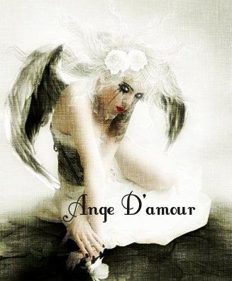 Blog Les folies D'Ange D'amour