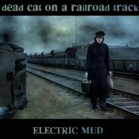 Dead Cat On a Railroad Track