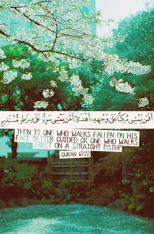Quran 67:22