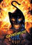 Blog de CAT2009ELFE - Bienvenue chez Cat