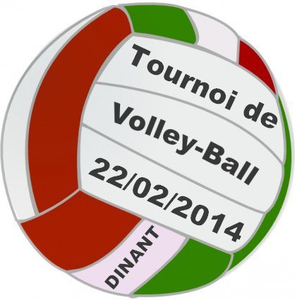 Tournoi de volleyball à Dinant