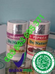 Undiabets dan Pipeca, Obat Diabetes cilacap | Obat Diabetes
