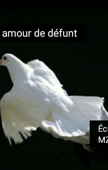 Un amour de défunt - Isabelle Magwet - Wattpad