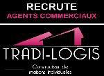 Annonce 'Agents commerciaux en maisons individuelles '