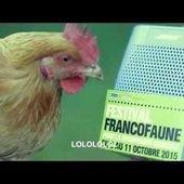 Festival FrancoFaune, pour la biodiversité musicale ! - Last night in Orient